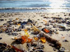 Бурштин на пляжі в Литві