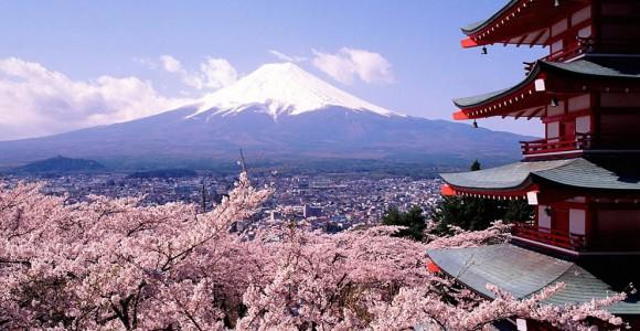japan_sakura_blossom_pagoda