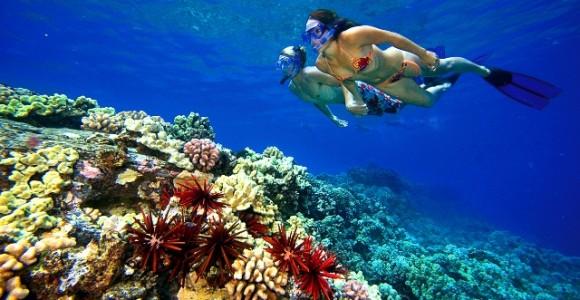 snorkeling_egypt_bikini_2