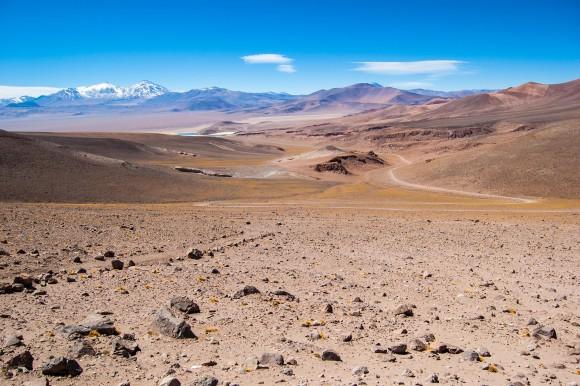 Звичний вигляд пустелі
