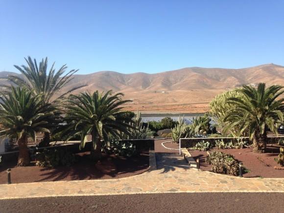 Canary Islands — (20)