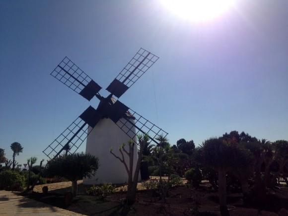 Canary Islands — (21)