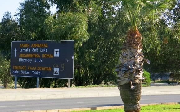 Larnaca Solt Lake - walk around (1)
