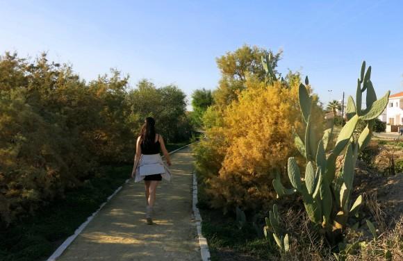Larnaca Solt Lake - walk around (14)