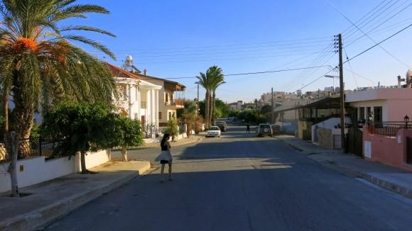 Larnaca Solt Lake - walk around (19)