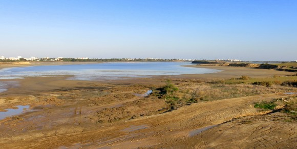 Larnaca Solt Lake - walk around (23)