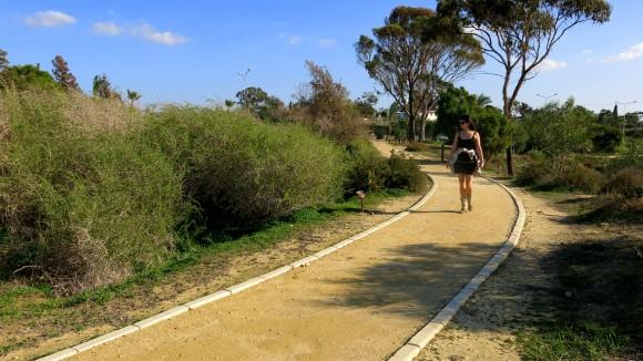 Larnaca Solt Lake - walk around (4)