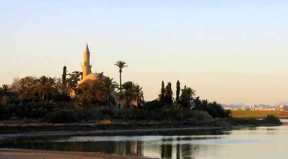 Larnaca Solt Lake - walk around (46)