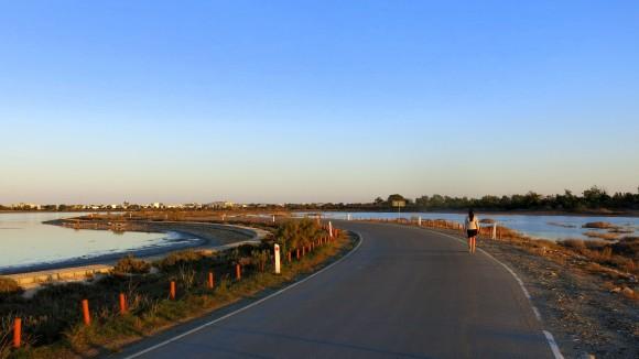 Larnaca Solt Lake - walk around (47)