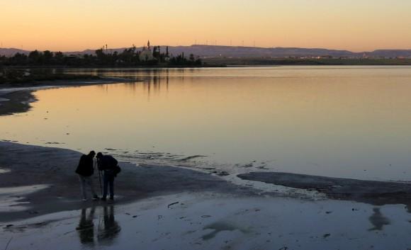Larnaca Solt Lake - walk around (52)