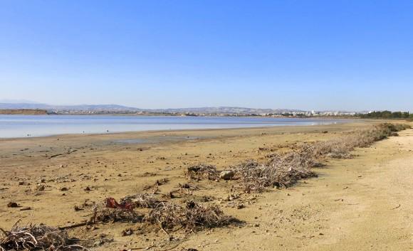 Larnaca Solt Lake - walk around (6)