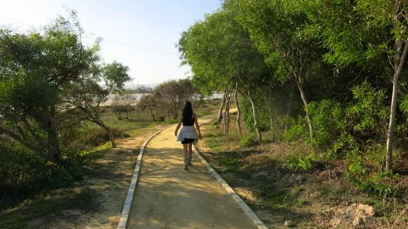 Larnaca Solt Lake - walk around (9)