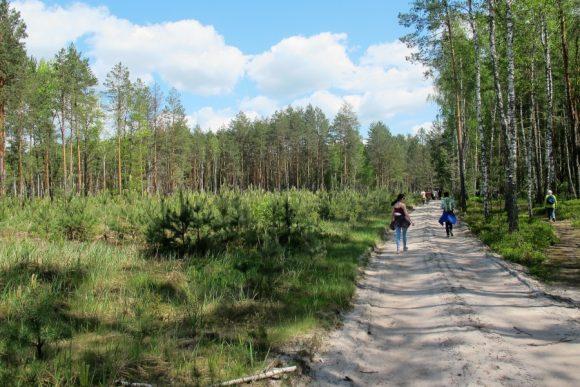 olevskyj-rayon-kamyane-selo-kaminne-kamjane-selo-4