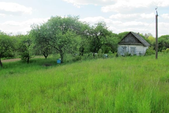 olevskyj-rayon-selo-rudnia-zamyslovecka-rudnja-zamyslovecka-1